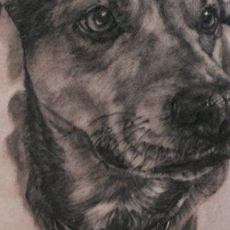 Elizabeth Shasta portrait